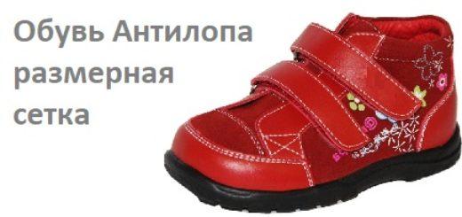 Обувь Антилопа размерная сетка